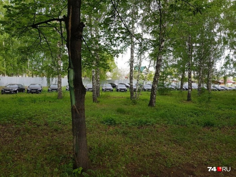 В лесу Челябинска обнаружили десятки новых правительственных иномарок