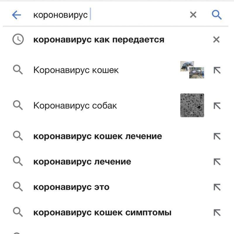 Странные запросы в поисковиках, способные поставить в тупик