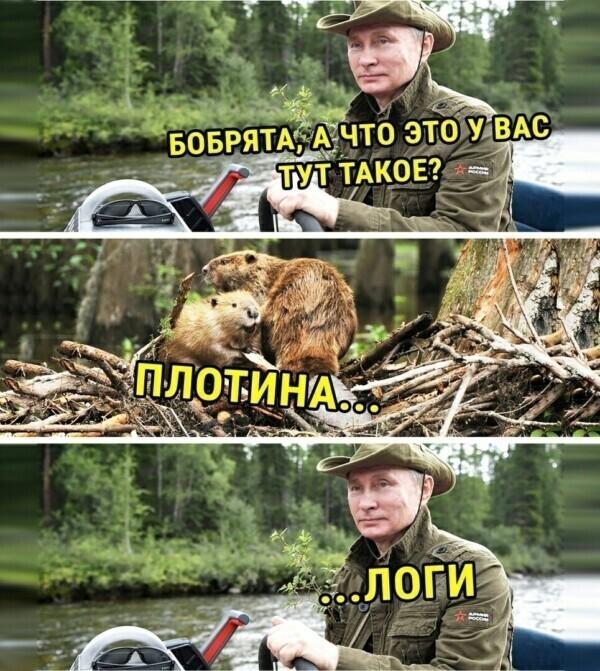 Президент рассказал россиянам о новых налогах, выплатах и льготах
