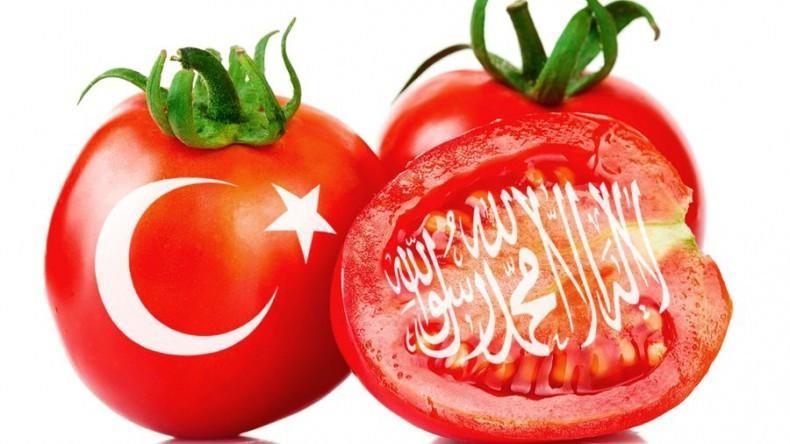 Турецкие помидоры сомнительного качества наводнили российский рынок