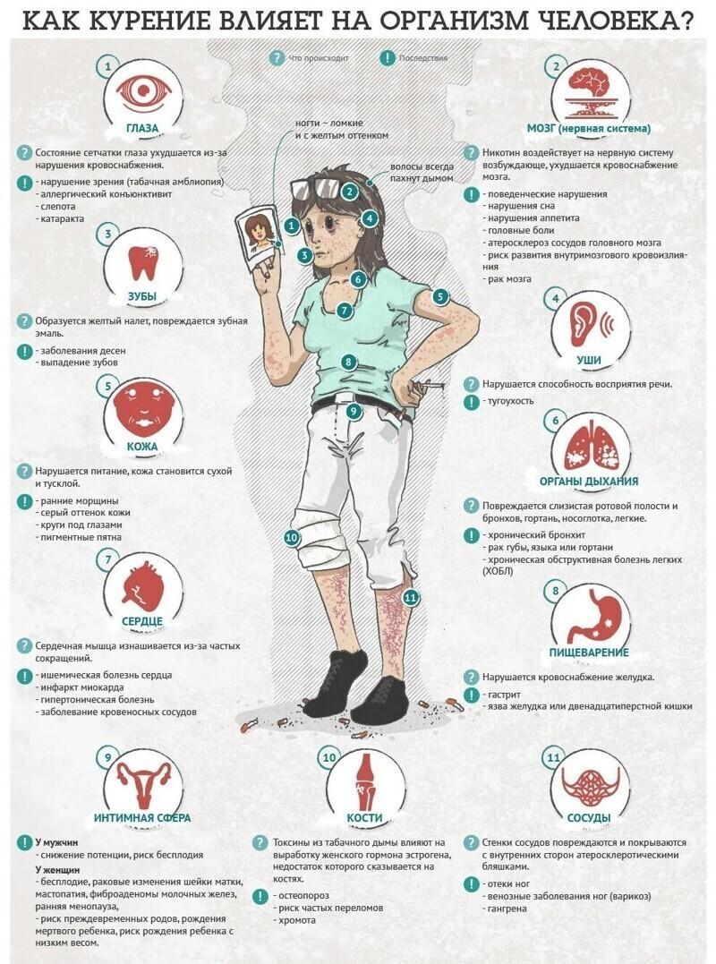 Невероятно полезные шпаргалки для здоровья и диагностики