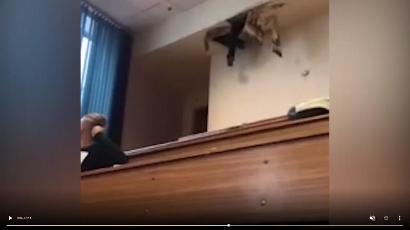 """Студент Бауманки """"пришел"""" на занятие через дыру в потолке"""