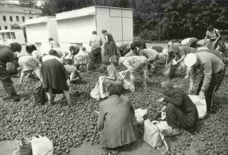 Раздача бесплатной гнилой картошки в  Москве, 1993 год