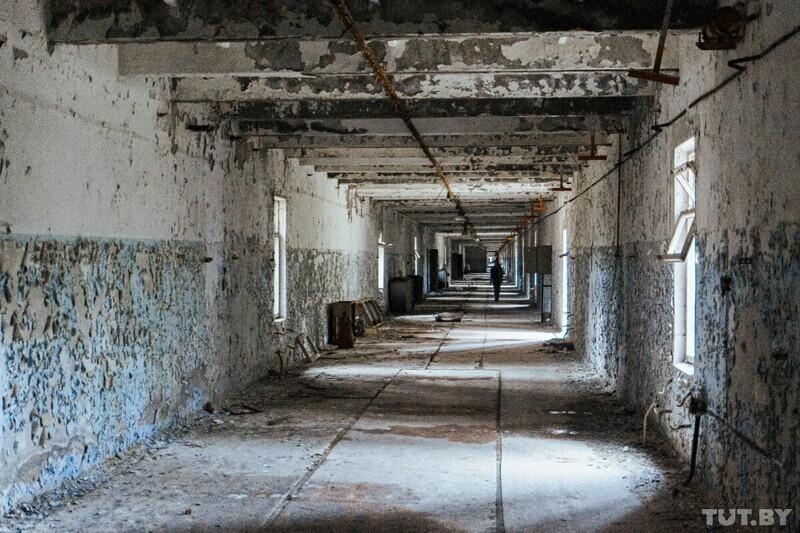 Чернобыль: как выглядит зона отчуждения 35 лет спустя