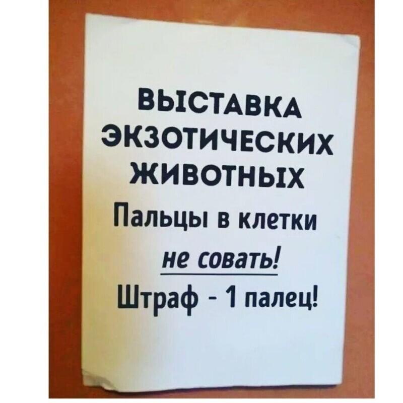 Нескучные объявления с просторов России
