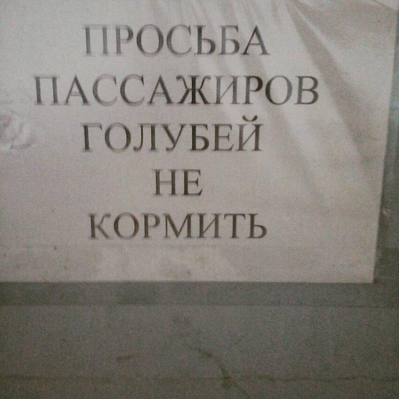 Уморительные объявления с просторов России