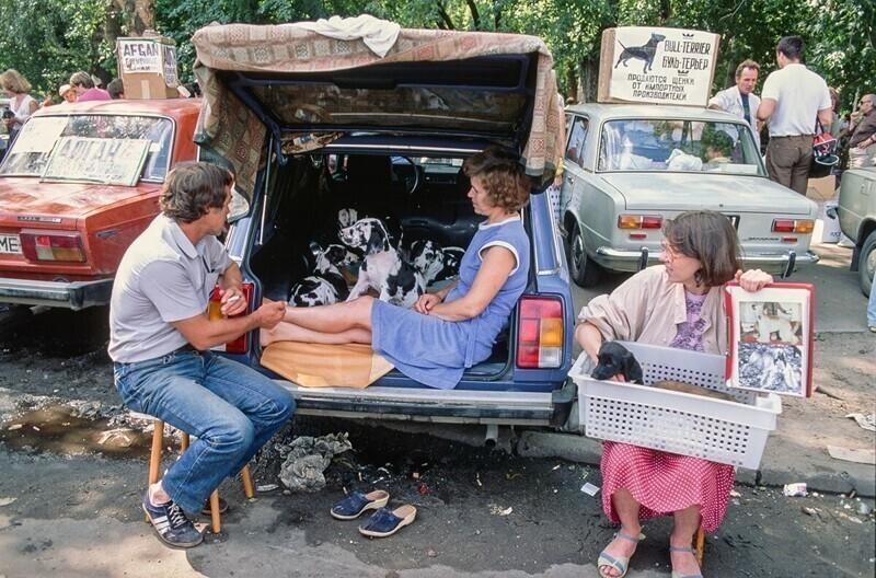 Выездная торговля домашними животными в Москве, 1991 год