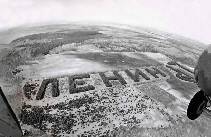 Как в СССР создавали леса в форме слов