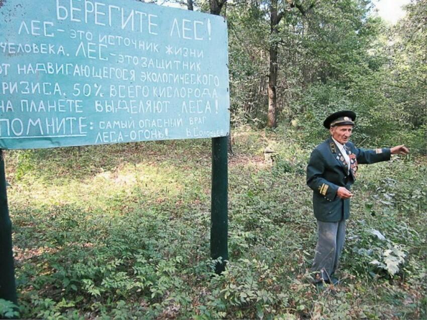 Как рязанский лесник за 20 лет вырастил лес там, где это считалось невозможным